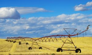 Four Ways AgTech is securing the future of food